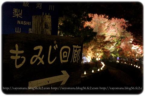 sayomaru11-403.jpg