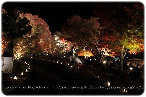 sayomaru11-404.jpg