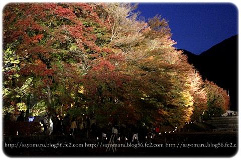 sayomaru11-410.jpg