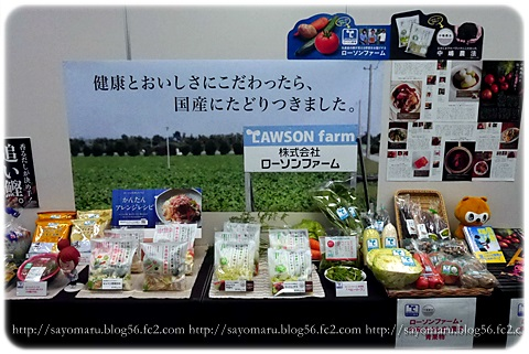 sayomaru11-417.jpg