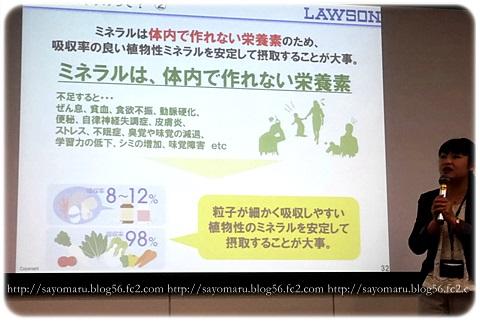 sayomaru11-430.jpg