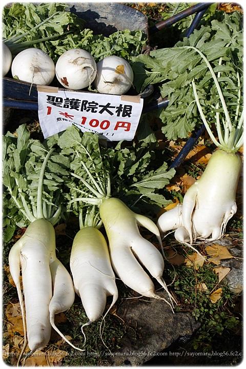 sayomaru11-446.jpg