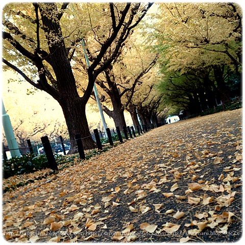 sayomaru11-533.jpg