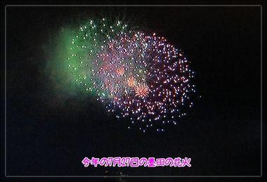墨田の花火2ブログ用