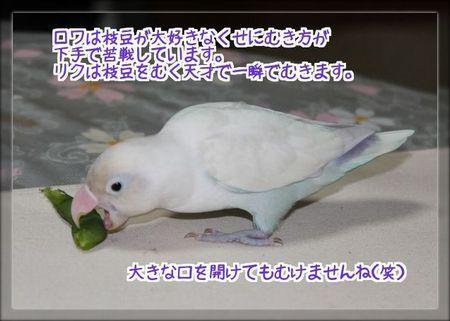 ロワ苦戦ブログ用