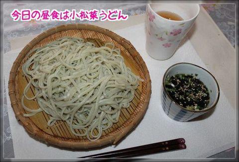 小松菜うどんブログ用