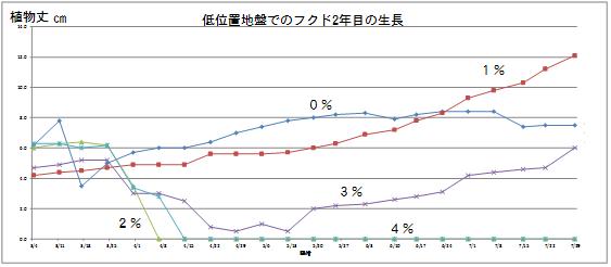 低位置生長グラフ
