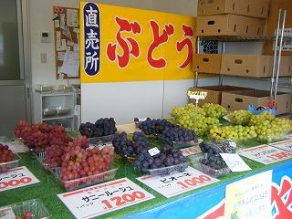 桃山ぶどう園 001