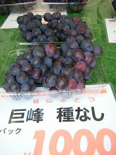 桃山ぶどう園 003