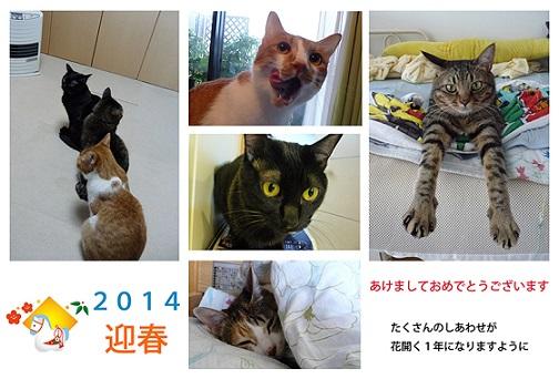 2014nenga003.jpg