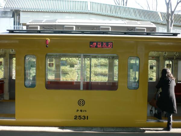 西武2531F 各停西所沢行き 側面写真 2013-02-03