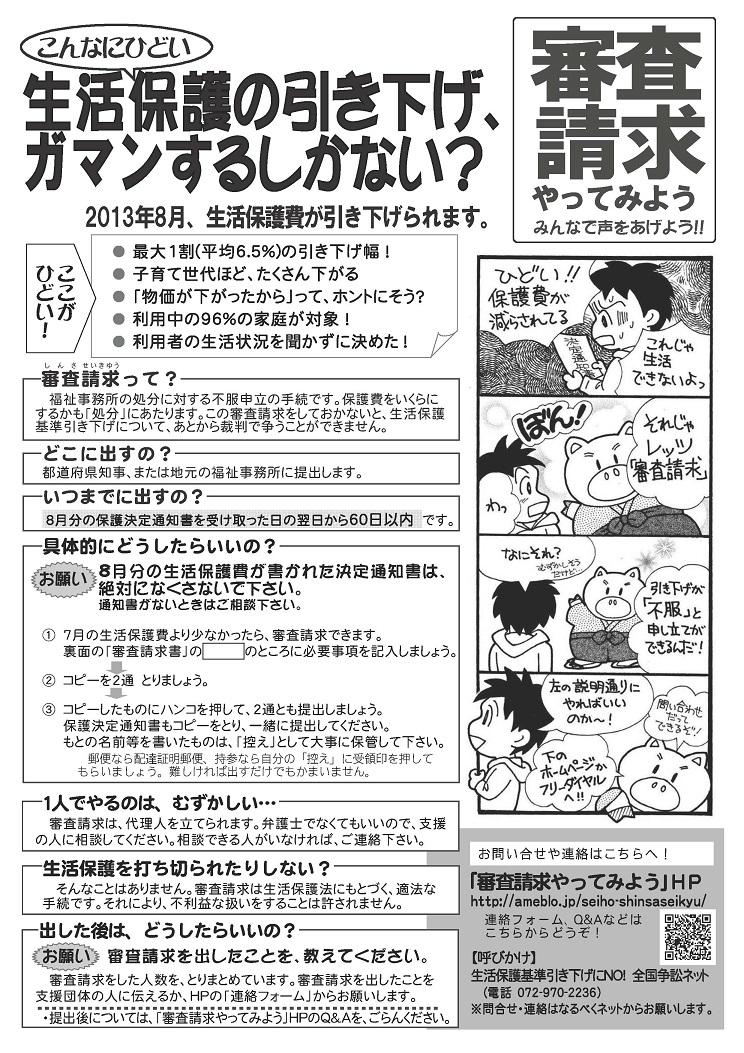 審査請求チラシ・表(説明)