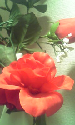 Image250_201308120939123a7.jpg