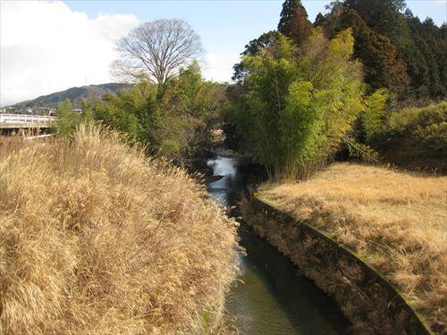 関ケ原合戦 中井均先生ツアー 松尾山と南宮山 黒血川