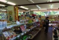 碁石海岸10碁石海岸レストハウス売店