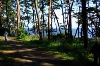 碁石海岸15遊歩道
