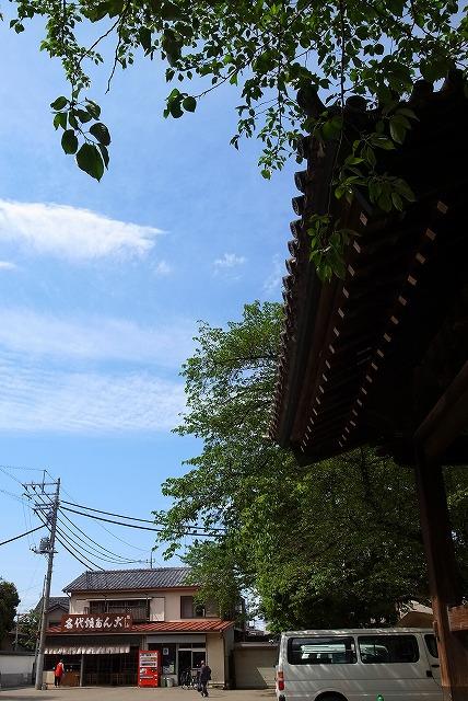 2013-04-25 まことや 004