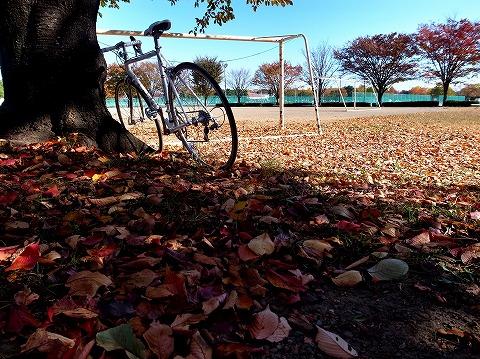 2014-11-19 川越水上公園 014