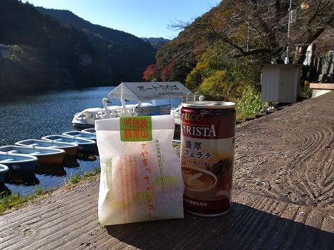2014-11-19 鎌北湖 055