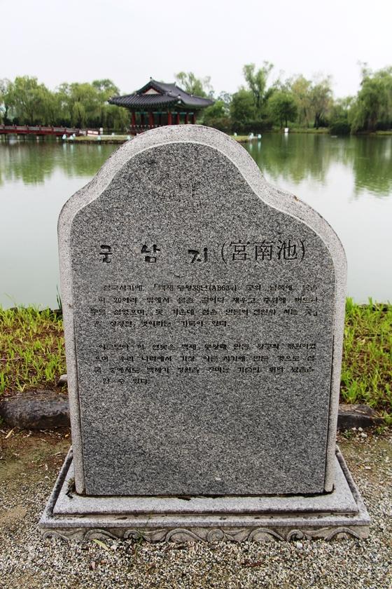 130912kunnamji (4)