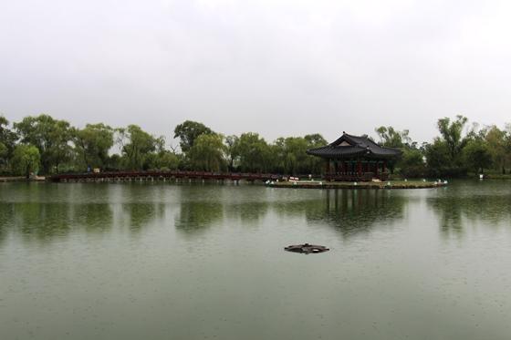 130912kunnamji (5)