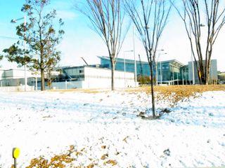 2013年1月羽田空港
