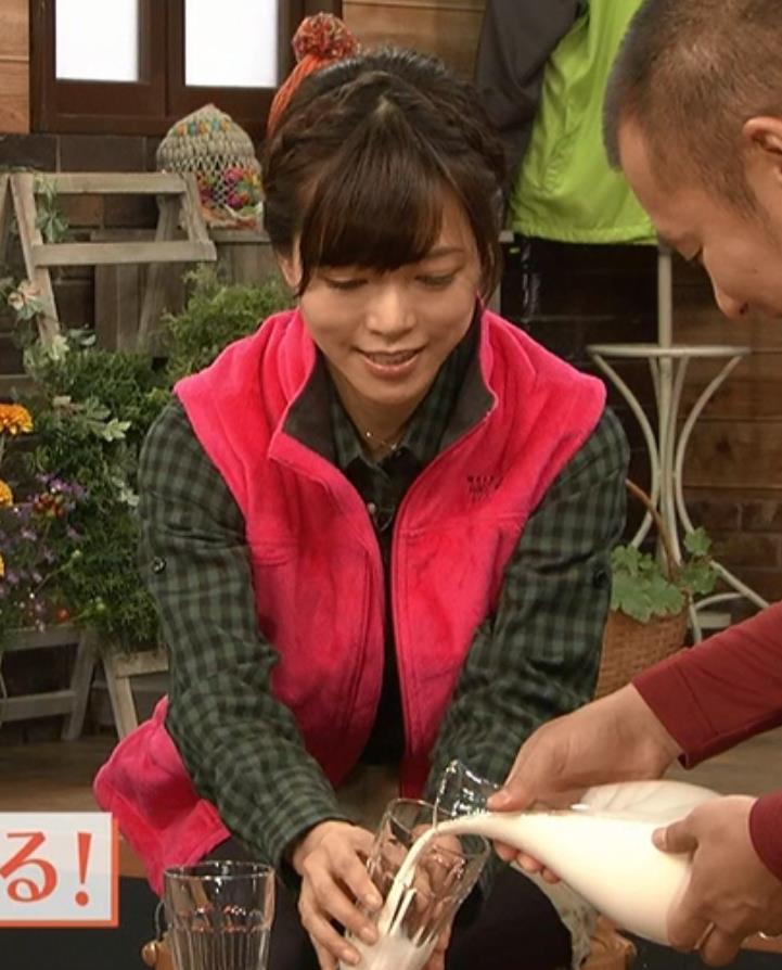 釈由美子 山ガール姿キャプ・エロ画像3