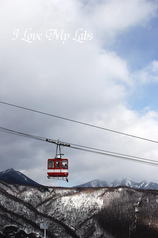 IMG_4790 (2)Nikko Winter 2013