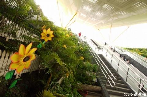 美麗島站-中央公園站21