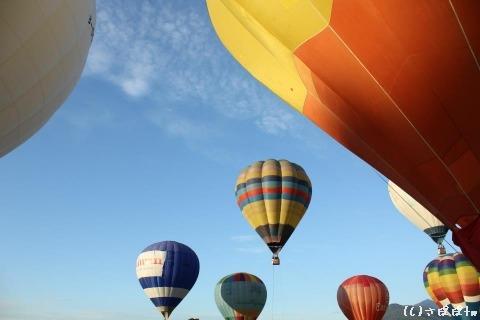 鹿野高台で熱気球21