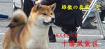 fuukun_bn2_yasukaze.jpg