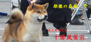 fuukun_bn3_yasukaze_2013080914474714b.jpg