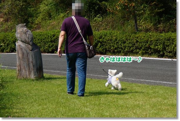 芝生でダッシュ♪6
