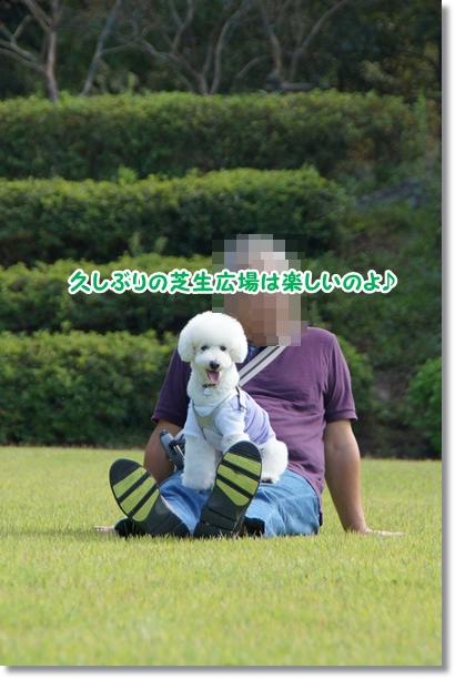 芝生でダッシュ♪8