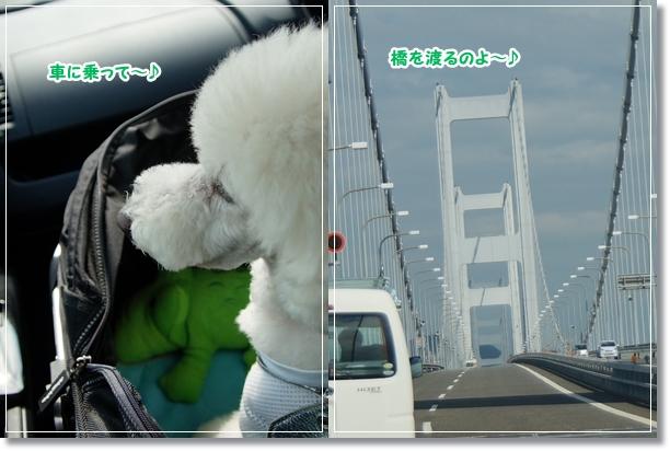 橋を渡って♪1