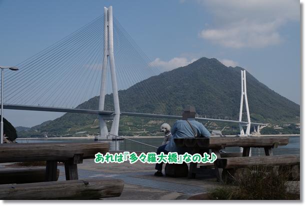 橋を渡って♪3