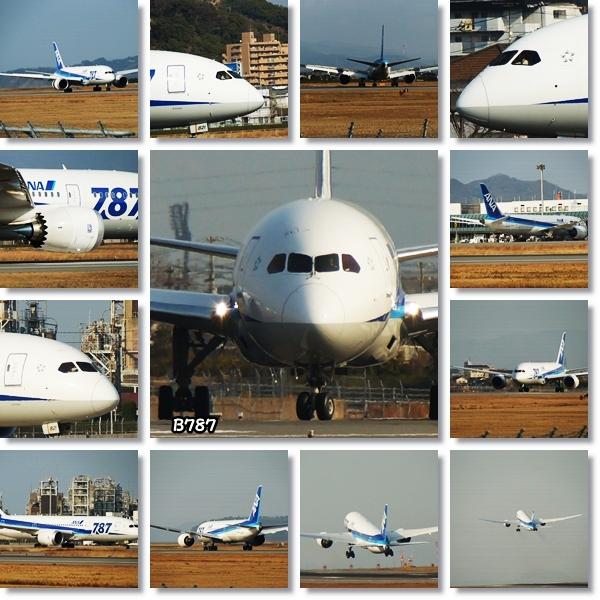 飛行機を眺めに6