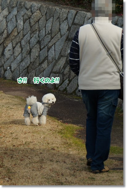 シンちゃんは歩くよ、どこまでも2