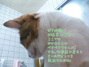 fc2_2014-01-18_22-57-36-811.jpg