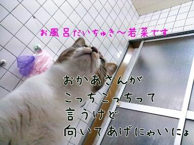 fc2_2014-01-18_22-59-33-810.jpg