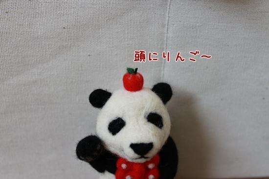 IMG_2931_R.jpg