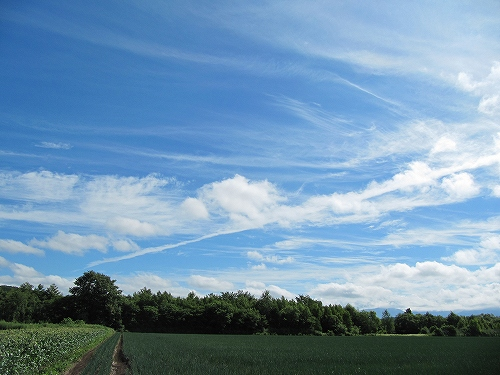 s-ひこうき雲 2