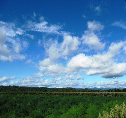 s-青空と雲はいいが、、、