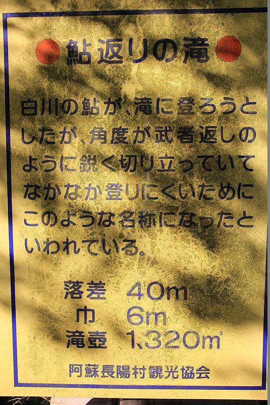 IMG_0156-s_2013102811440665e.jpg