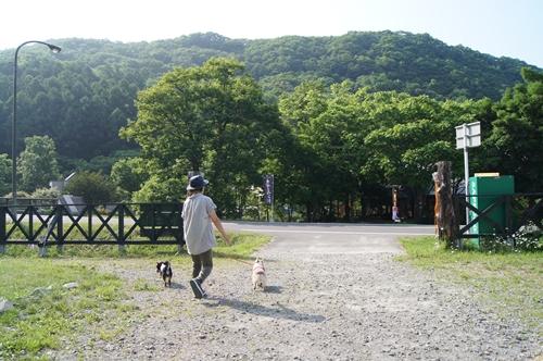 20130625-028.jpg