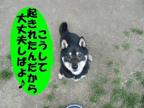 20130703-003.jpg