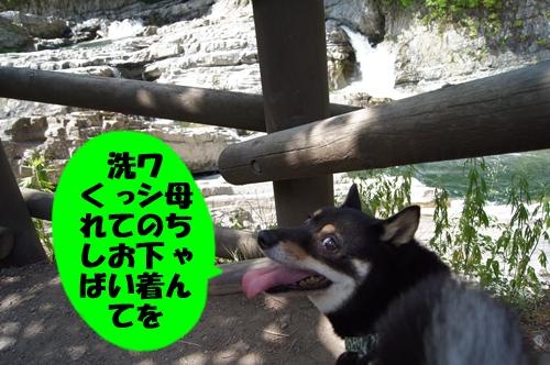 20130721-020.jpg