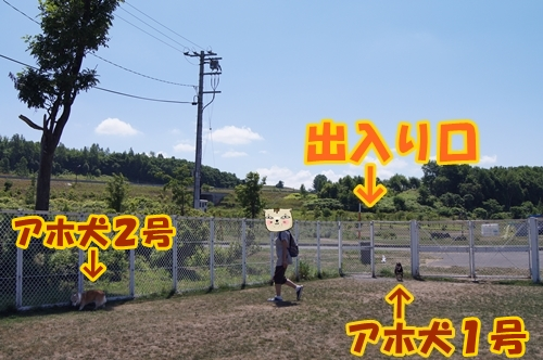 20130723-022-.jpg