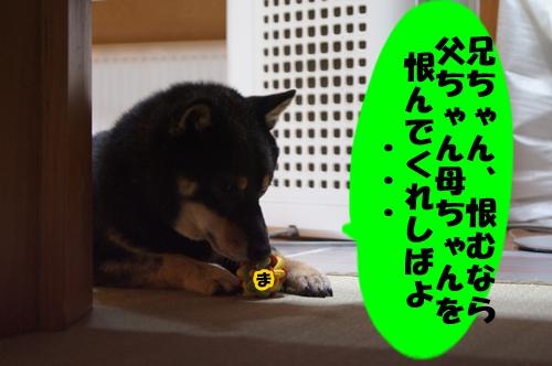 20130824-017.jpg
