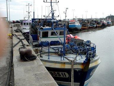 ロスコフ(Roscoff)漁港03